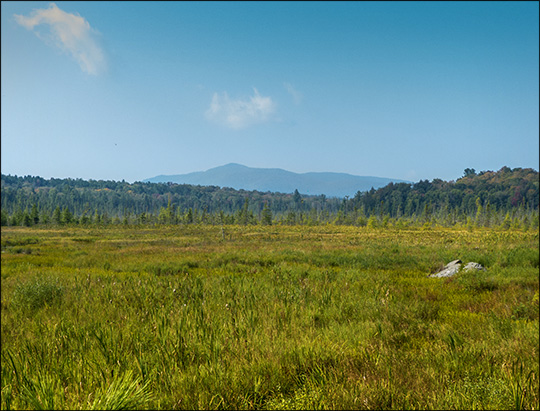 Adirondack Wetlands: Heron Marsh and Saint Regis Mountain (11 September 2013)