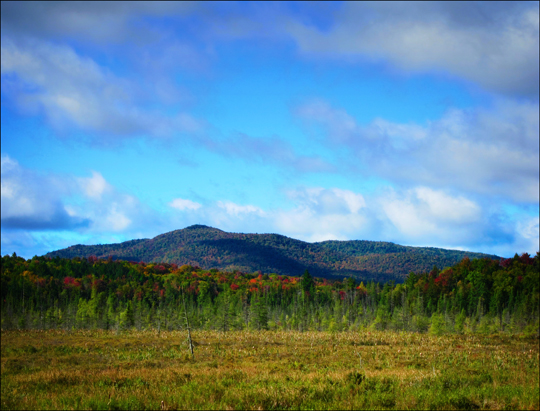 Adirondack Wetlands:  Heron Marsh and Saint Regis Mountain from the Barnum Brook Trail (19 September 2012)