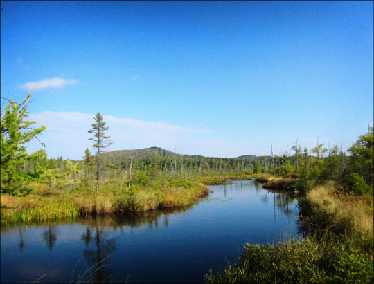 Adirondack Wetlands:  Barnum Bog from the Boreal Life Trail boardwalk at the Paul Smiths VIC (22 September 2012)