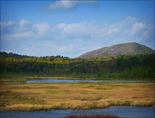 Adirondack Wetlands:  Heron Marsh from the Heron Marsh Trail Overlook at the Paul Smiths VIC (22 September 2012)