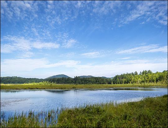 Adirondack Wetlands:  Heron Marsh from the Heron Marsh Trail Overlook (26 July 2014)