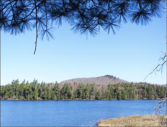 Adirondack Habitats:  Barnum Pond at the Paul Smiths VIC (4 May 2013)