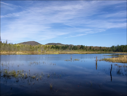 Adirondack Wetlands:  Heron Marsh from the Heron Marsh Trail Overlook at the Paul Smiths VIC (8 May 2013)