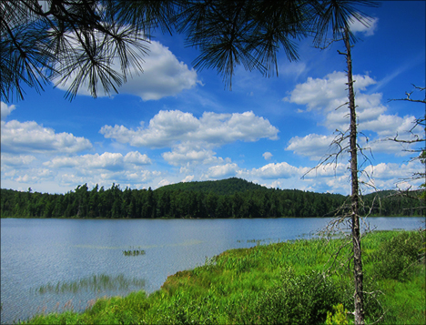 Barnum Pond from the Boreal Life Trail overlook at the Paul Smiths VIC