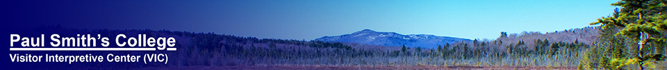 Adirondack Wetlands: Saint Regis Mountain and Heron Marsh (23 April 2013)