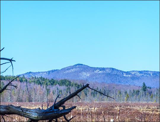 Adirondack Wetlands: Heron Marsh and Saint Regis Mountain (23 April 2013)