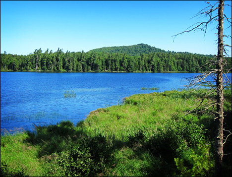 Adirondack Habitats:  Barnum Pond from the Overlook at the Paul Smiths VIC