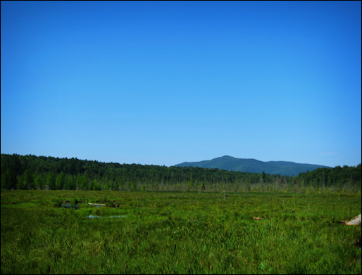 Adirondack Wetlands: St. Regis Mountain from Heron Marsh at the Paul Smiths VIC (22 July 2011)