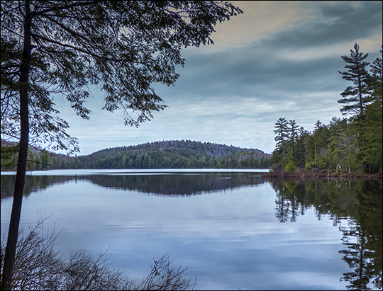 Adirondack Habitats:  Black Pond from the Black Pond Trail (27 April 2013)