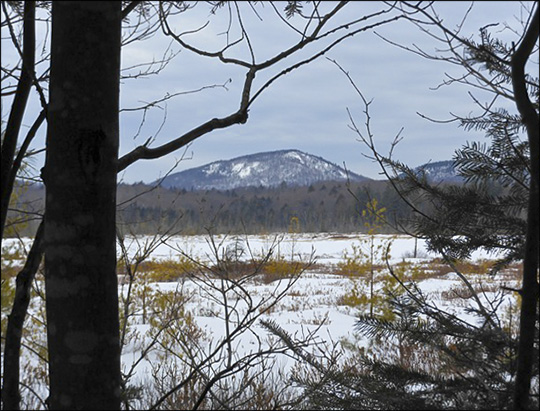 Adirondack Wetlands:  Heron Marsh in winter.  Photo courtesy of Father Joe.  Used by permission.