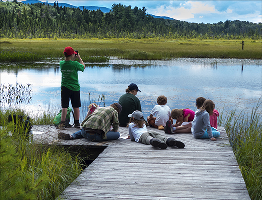 Junior Naturalists:  Exploring Adirondack Wetlands