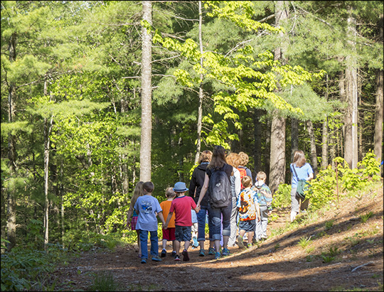 Children's Nature Programs:  Five Senses Walk