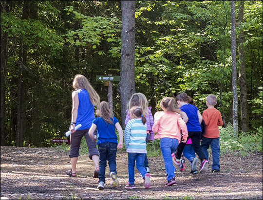 Children's Nature Programs: Off to explore the Mole Touch Box