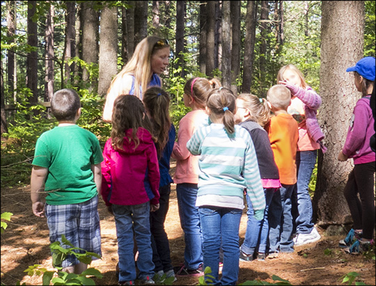 Children's Nature Programs:  Learning about animal senses