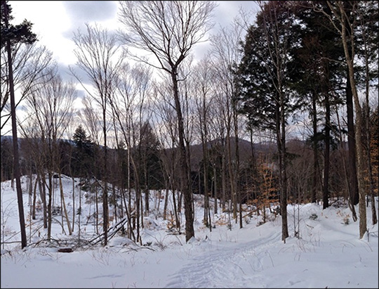 Esker Trail in winter.  Photo by Sandra Hildreth.  Used by permission.