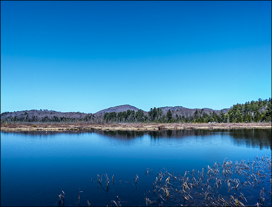 Adirondack Wetlands:  Heron Marsh from the first overlook (23 April 2013)