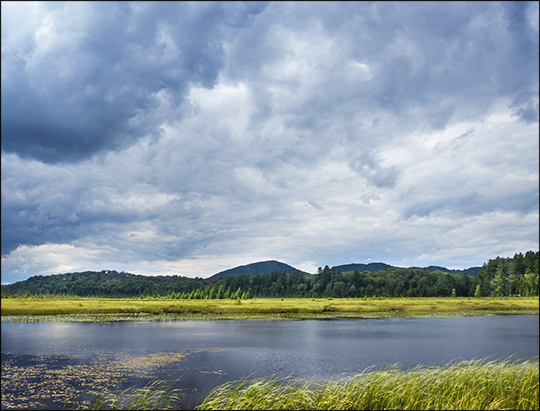Adirondack Wetlands:  Heron Marsh from the first overlook (29 July 2013)