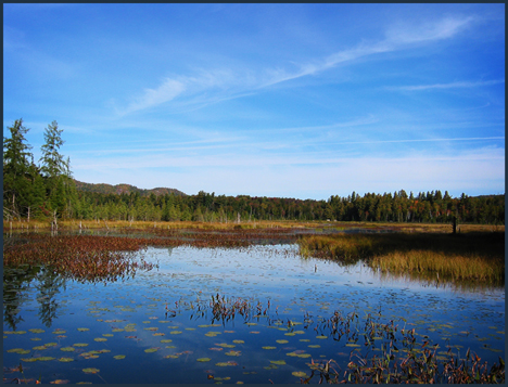 Fall color in the Adirondacks:  Heron Marsh from the floating bridge at the Paul Smiths VIC