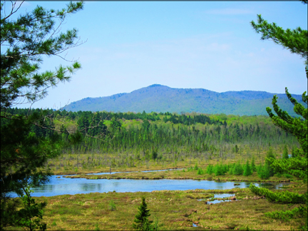 Adirondack Wetlands:  Saint Regis Mountain and Heron Marsh from the trail in front of the Paul Smiths VIC Building