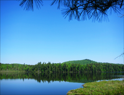 Barnum Pond from the Boreal Life Trail overlook