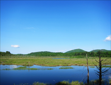 dirondack Wetlands: Heron Marsh from the first overlook on the Heron Marsh Trail