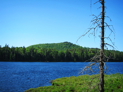 Adirondack Habitats:  Barnum Pond from the Boreal Life Trail overlook at the Paul Smiths VIC (3 June 2011)