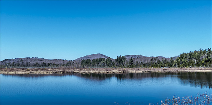 Adirondack Wetlands: Heron Marsh at the Paul Smiths VIC (23 April 2013)