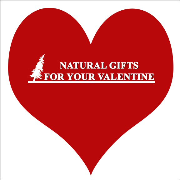 Workshops at the VIC:  Natural Gifts for your Valentine