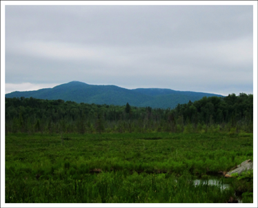 Adirondack Wetlands: Heron Marsh and St Regis Mountain from the Barnum Brook Trail (29 June 2011)